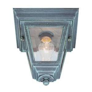 Trans Globe 4903 VG Outdoor Close to Ceiling Light