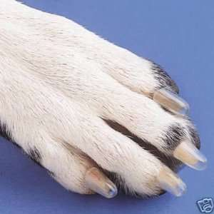 Claw Paw Nail Caps DOGS K9 Size XLARGE in NATURAL