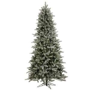 Vickerman 4.5 Foot Frosted Frasier Fir 669 Tips Christmas