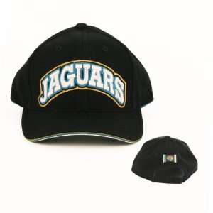 Adjustable, Officially Licensed National Football League Baseball Cap